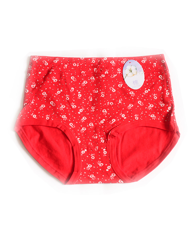 Red Floral High Waist Plus size Panty