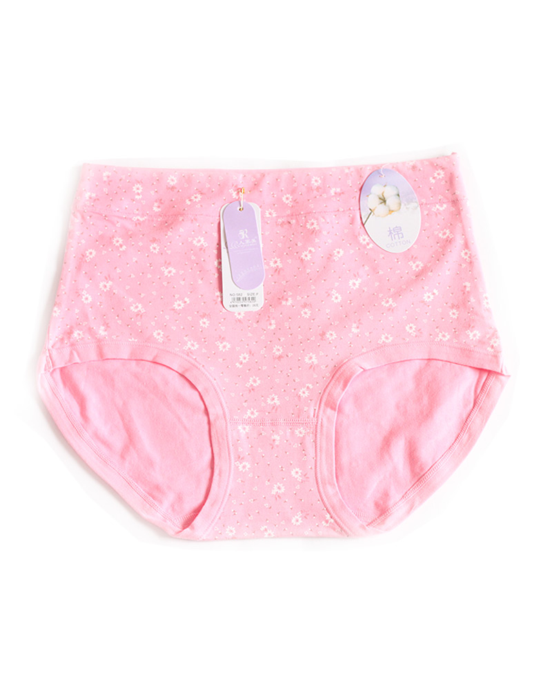 Light Pink Floral High Waist Plus size Panty