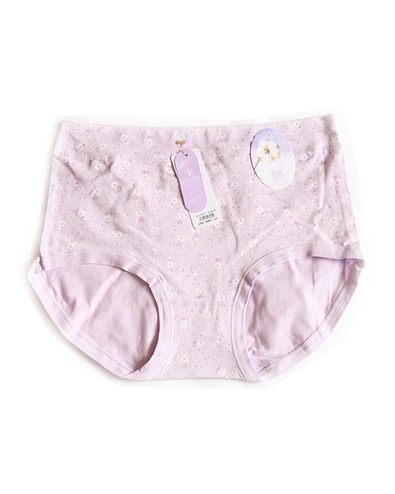 Light Purple Floral High Waist Plus Size Panty