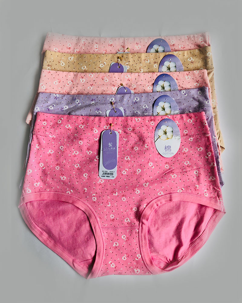 Pack of 5 Floral Cotton High Waist Plus Size Panties Combo