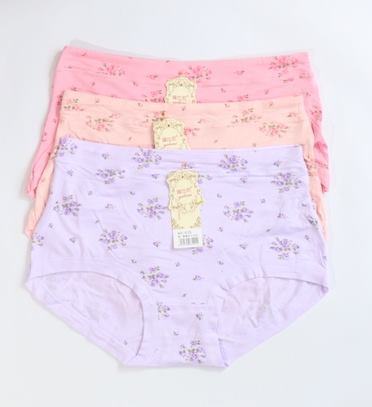 Pack Of 3 Cotton Floral Plus Size Panties Combo 2