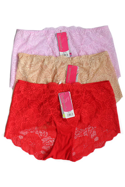 Pack of 3 Floral Net Boy Short Plus Size Panties Combo 2