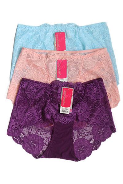 Pack of 3 Floral Net Boy Short Plus Size Panties Combo 3