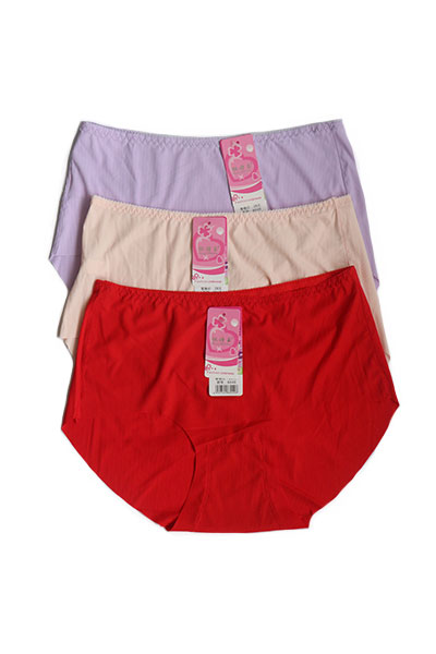 Pack of 3 Cotton Seamless Plus Size Panties Combo 3